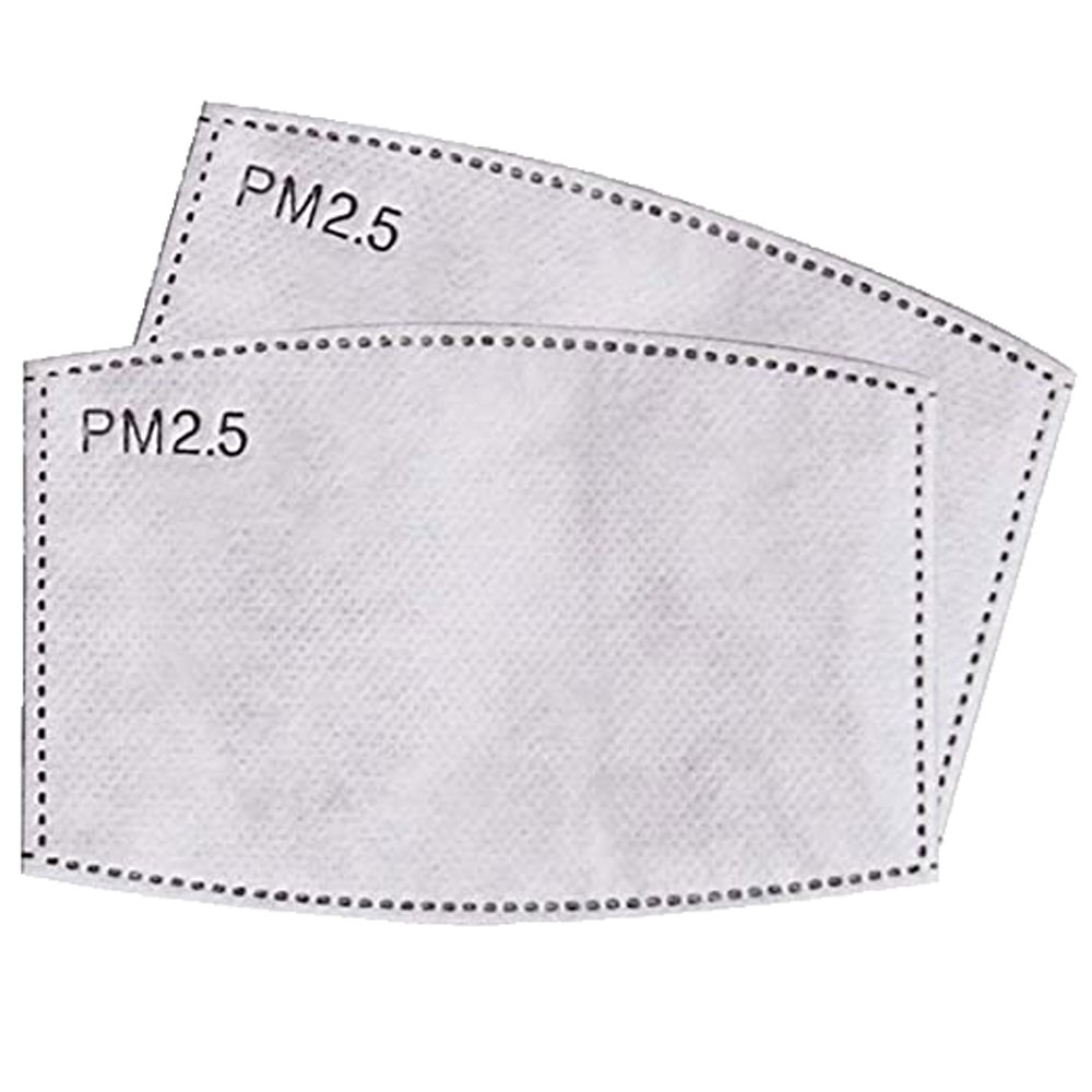 ADULT SIZE PM2.5 Filters - 10 Pack